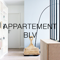 APPARTEMENT BELLEVILLE